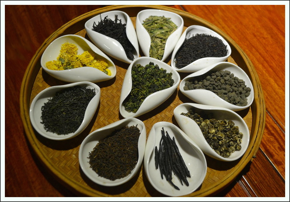 Teesorten Tee China camellia sinensis